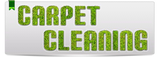 Carpet Cleaning Coto de Caza